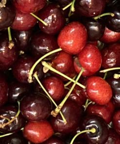 Kirsche-Frucht
